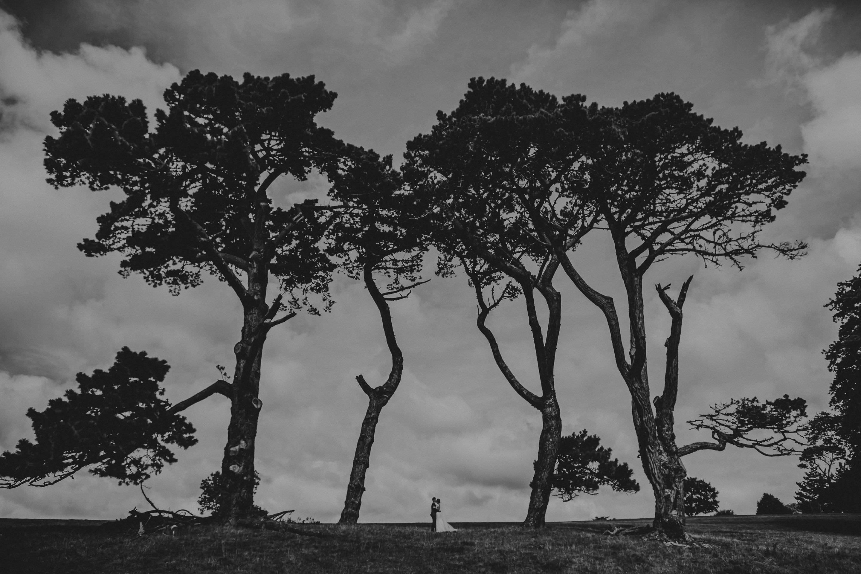 Cornwall and Devon Wedding Photographer - Best of 2016