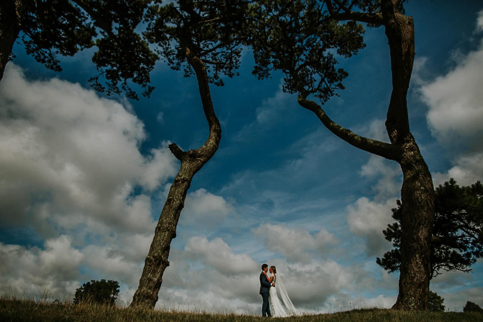 Trelissick Wedding